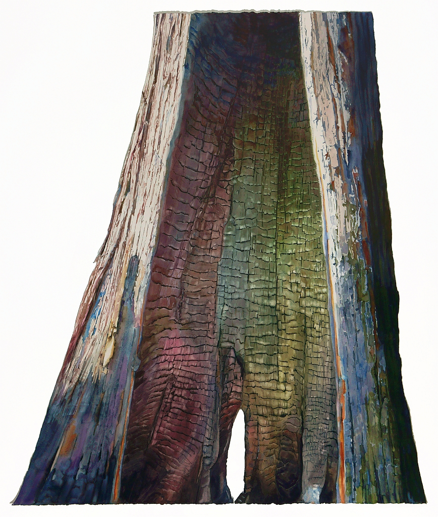 Suze Woolf burned tree painting
