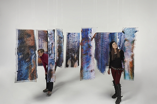 Photo of Suze Woolf installation