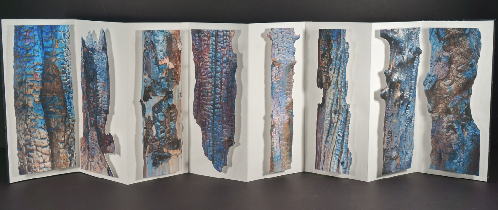 Pages of Suze Woolf artist book