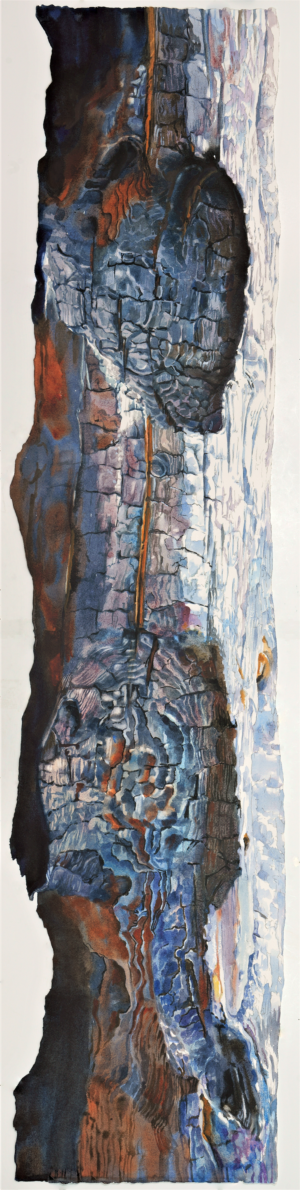 Suze Woolf watercolor painting of burned tree in Glacier National Park