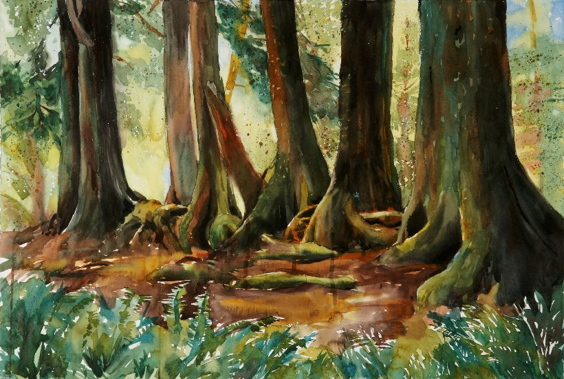 Nurselog, a Suze Woolf watercolor painting for the Nature Conservancy