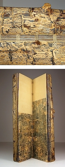 Photo of Suze Woolf artist book about bark beetles