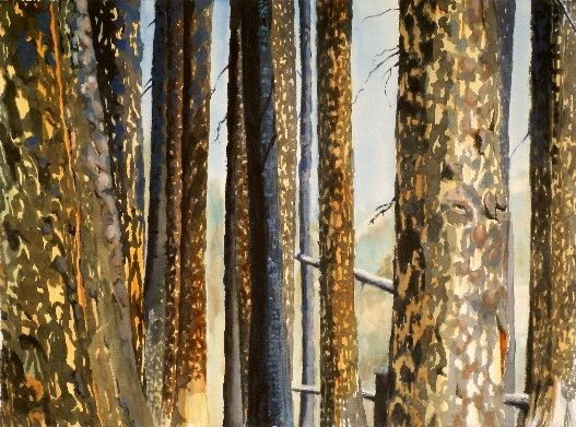 Remaining Bark is a Suze Woolf watercolor painting